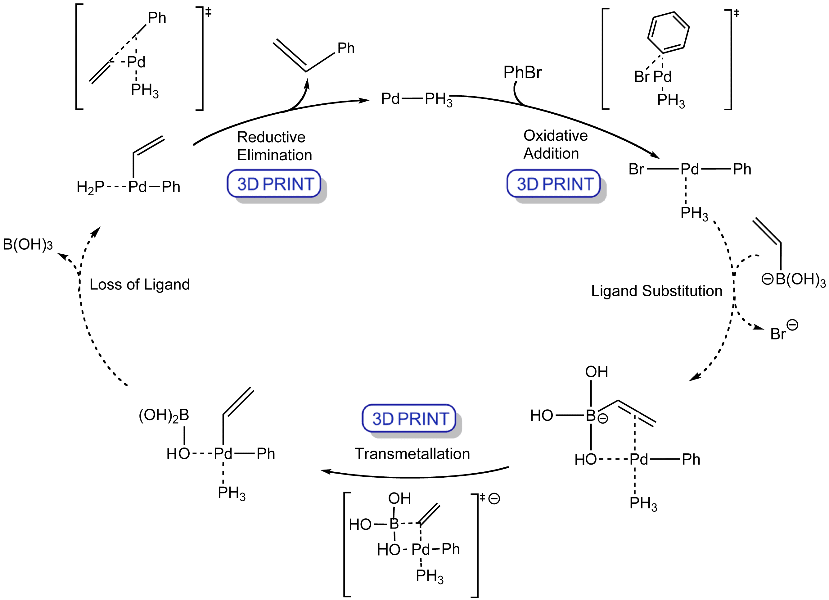 Organopalladium Chemistry The Suzuki Reaction