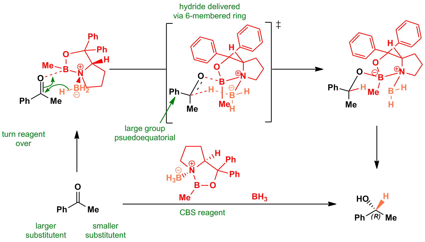 Asymmetric reduction of carbonyl with CBS reagent