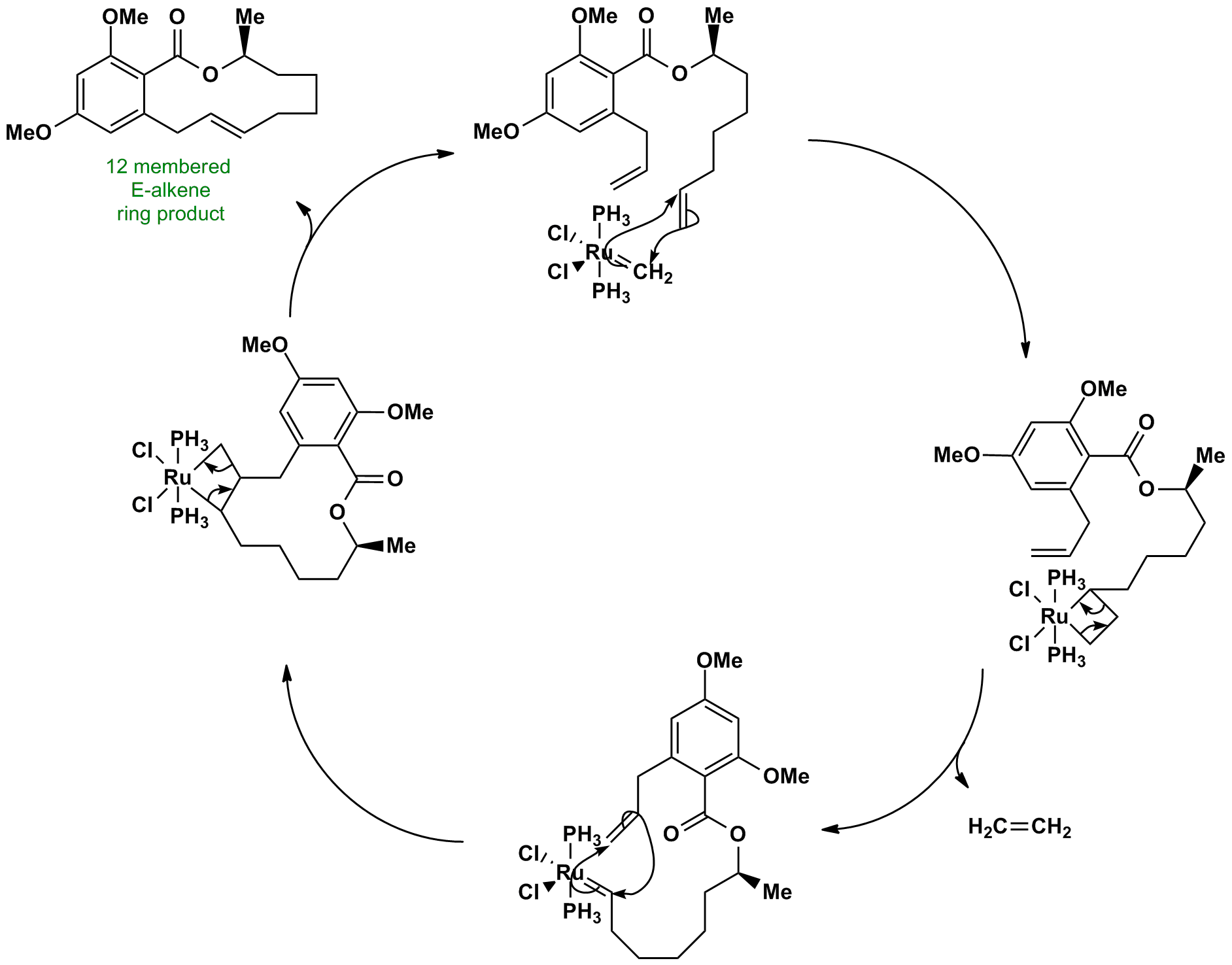 Olefin metathesis mechanism