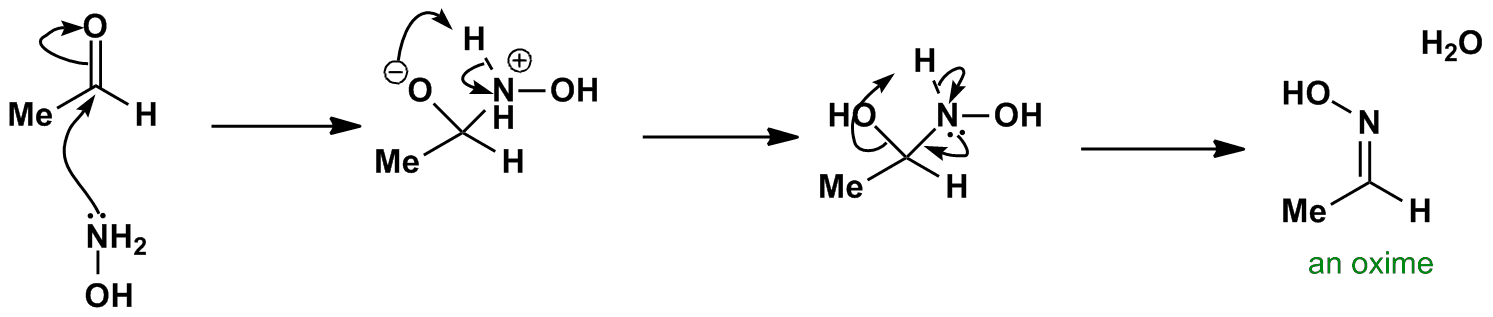 Oxime Formation Mechanism