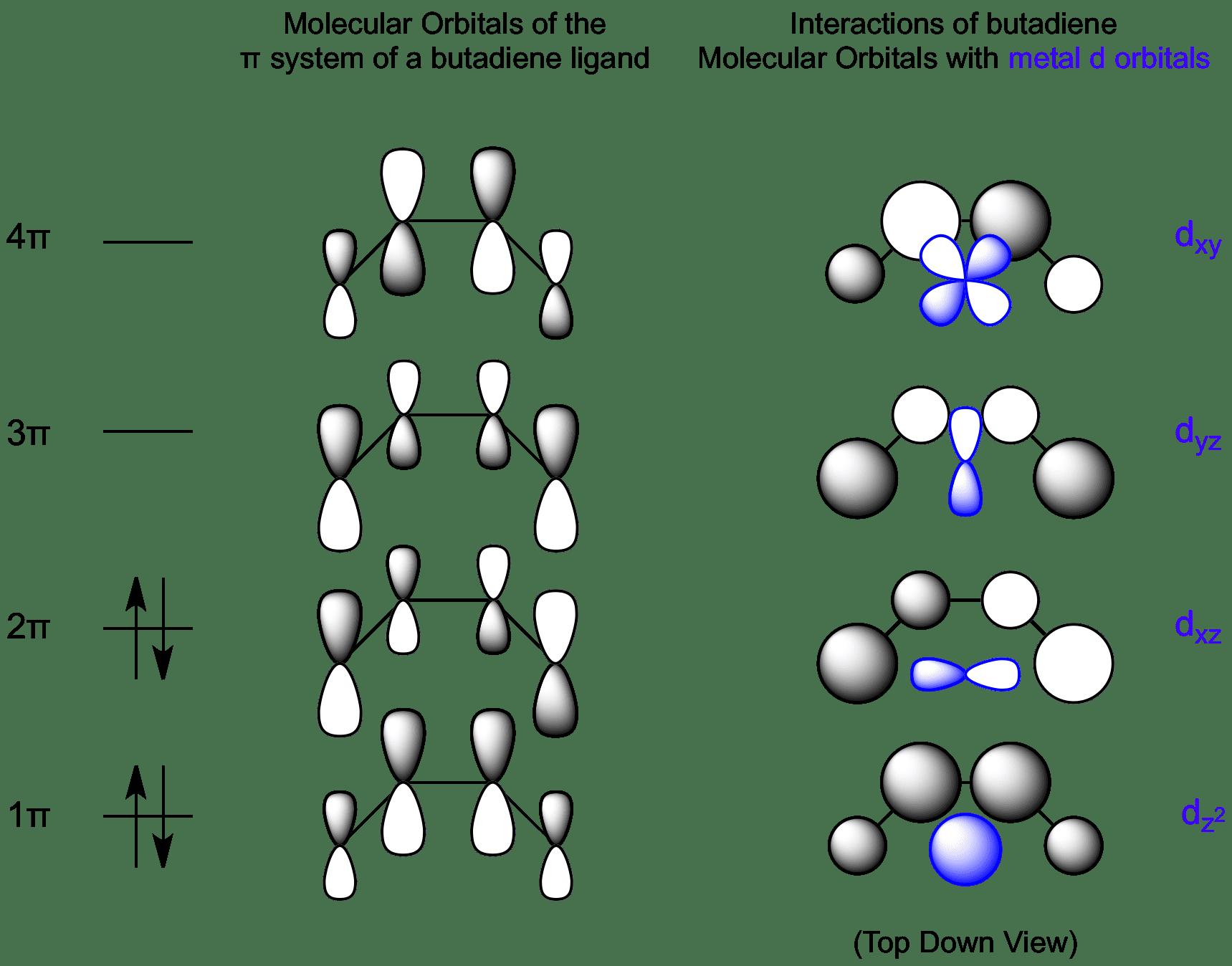 Interactions between butadiene molecular orbitals and metal d butadiene pooptronica