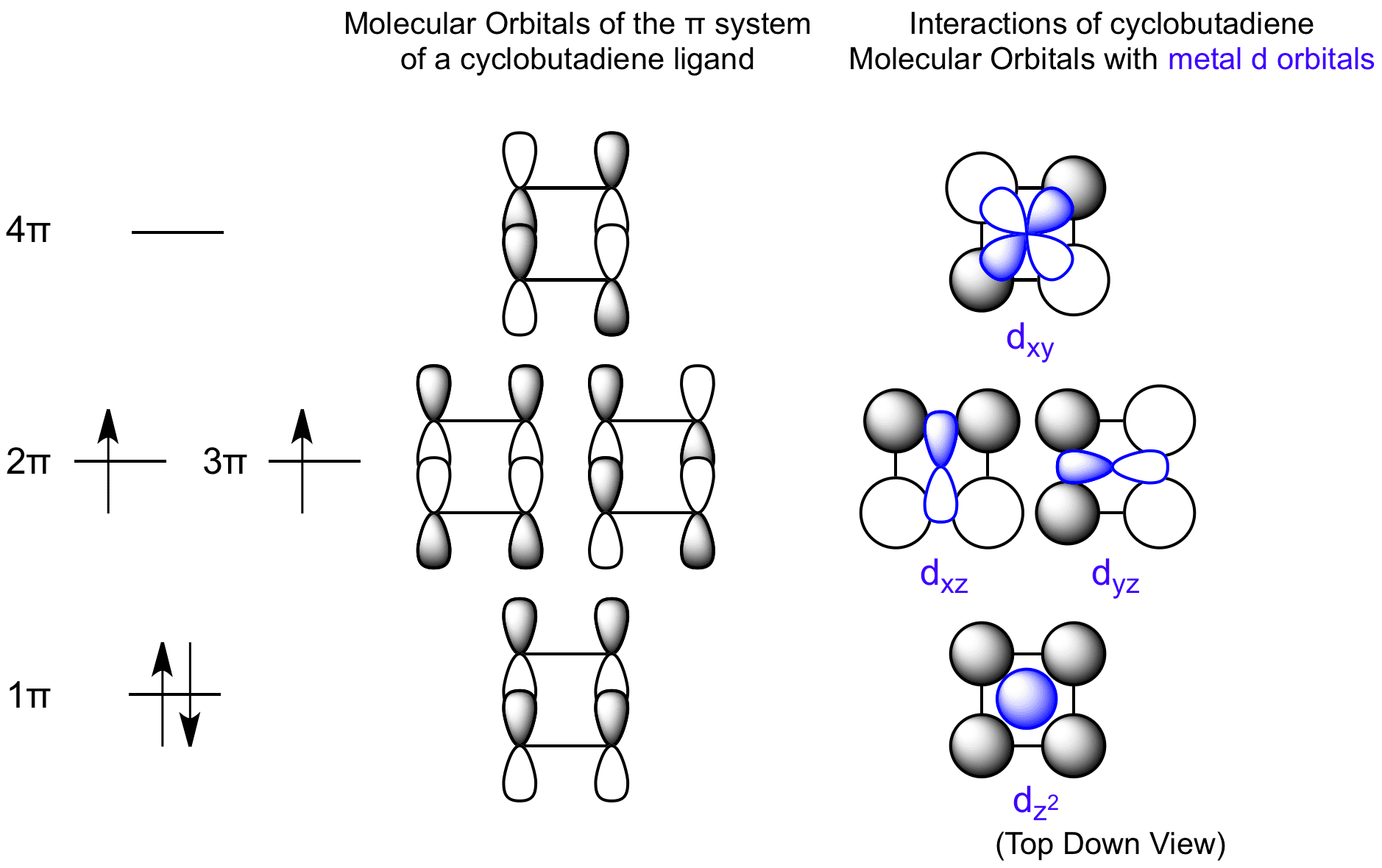 interactions between cyclopentadienyl molecular orbitals