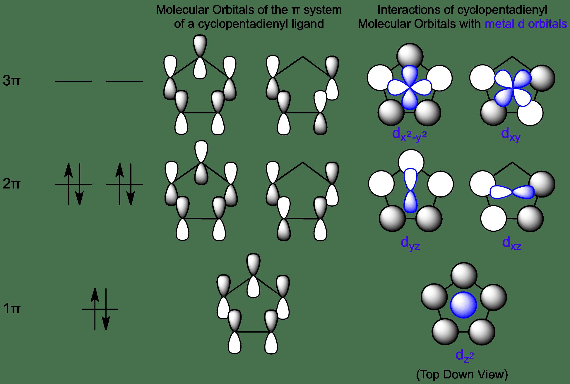 Interactions between cyclopentadienyl molecular orbitals and metal view cyclopentadienyl molecular orbitals here pooptronica