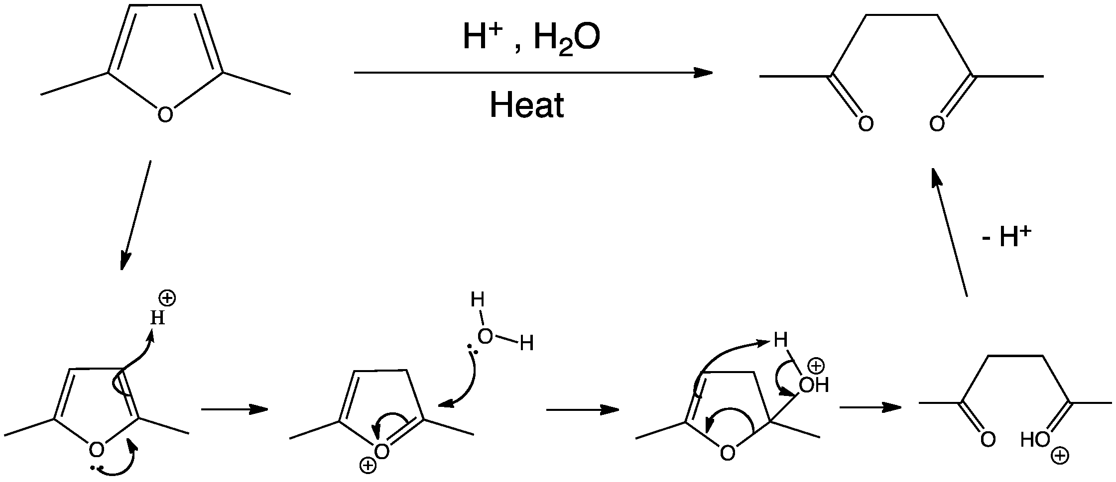 Aromatic Heterocycles Reactivity Furan Hydrolysis