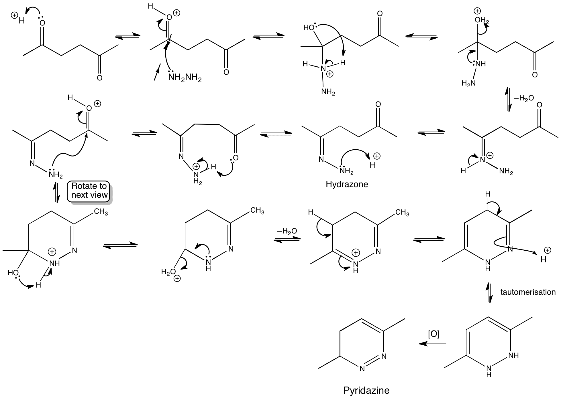 Synthesis of pyridazine fey thesis gulit