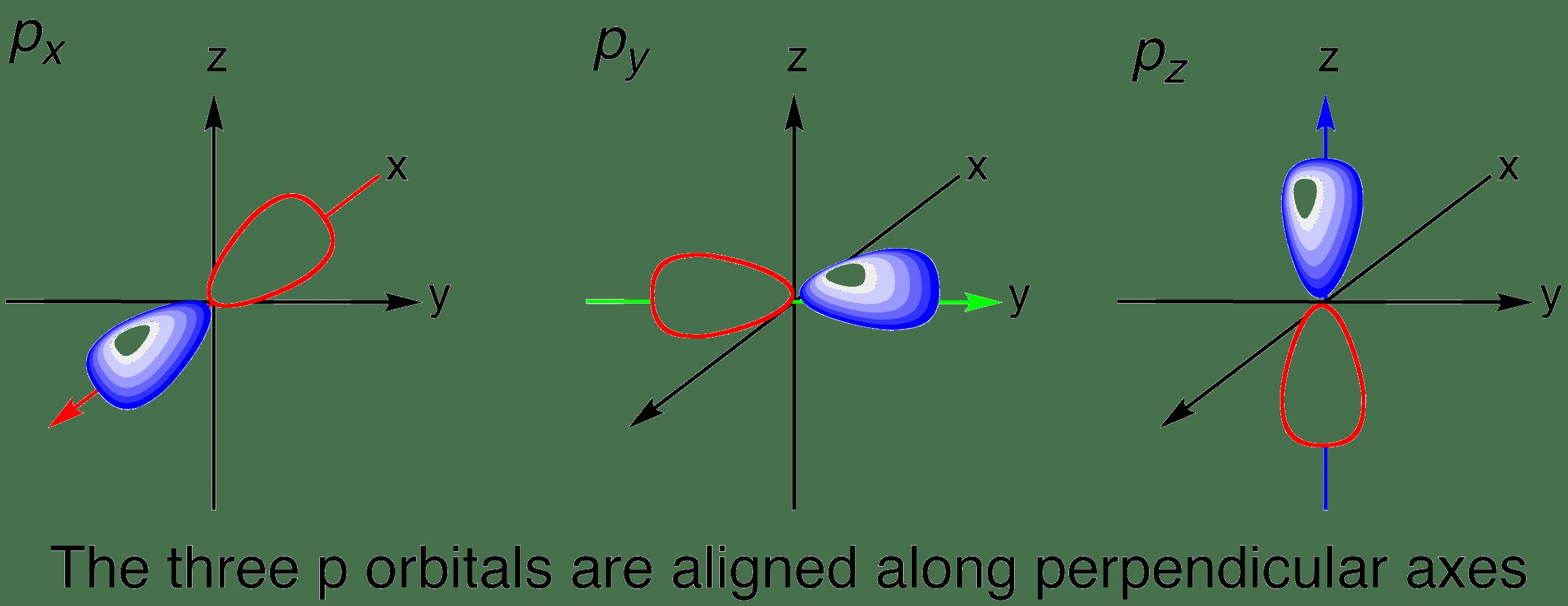 shape of p orbitals in 3d : p orbital diagram - findchart.co
